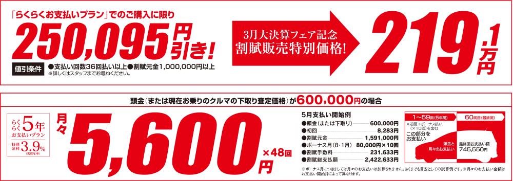 らくらくお支払いプランでのご購入に限り250,095円引き 頭金600,000円の場合 月々5,600円×48回